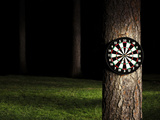 Dartboard in Forest at Night