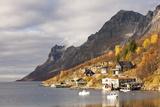 Autumn at Ersfjordboton  Tromso  Norway