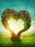 Heart Shaped Tree in the Meadow