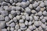 Stones for Landscape Gardening in Nursery
