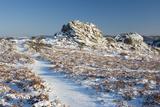 Great Tor Rocks in the Snow  Dartmoor  England