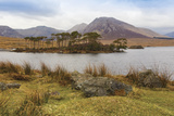 Connemara  County Galway  Ireland