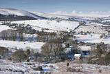 Hamel down in the Snow  Dartmoor  England