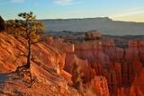 Bryce Canyon National Park Utah at Sunrise