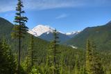 White River Valley  Mount Rainier National Park  Washington State  USA