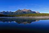 Herbert Lake  Banff Np  Alberta  Canada