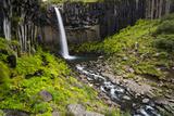 Svartifoss and Basalt Columns   Iceland
