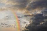 Emerging Rainbow