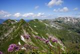 Allgau Alps with Nebelhorn  Oberstdorf  Bavaria