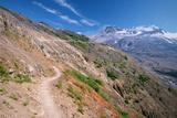 Trail on Hillside at Mount St Helens
