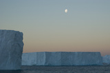 Moon Seeting over Massive Tabular Icebergs  South Georgia  South Atlantic