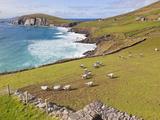 Near Slea Head, Dingle Peninsula, Ireland Papier Photo par Ken Welsh
