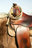 Saddle on Horse