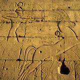 Ancient Egyptian Carving  Ramesseum Temple  Luxor