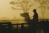 Silhouette of Man Riding Horse at Dusk