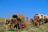 Mormons on Horse Carriages  Mormon Pioneer Wagon Train to Utah  near South Pass  Wyoming  United St