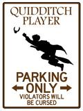Quidditch Player Parking