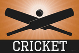 Cricket Orange Sports