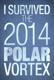 I Survived the 2014 Polar Vortex