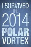 I Survived the 2014 Polar Vortex
