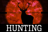 Hunting Red Buck