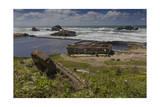 Sutro Baths Ruins  San Francisco  CA 1 (Seashore Landmark)