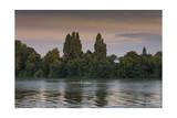 Sunset Skulling on Thames River  London (Exercise  Water Recreation  Hammersmith)