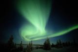 Canada  Manitoba  Wapusk National Park  Aurora Borealis