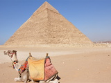 Camel and Classic Pyramid