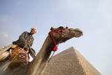 Tourist on Camel near Pyramid
