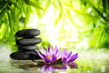 Spa Still Life with Lotus and Zen Stone on Water Bamboo Background