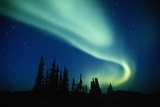 Aurora Borealis (Northern Lights)  Northwest Territories  Canada