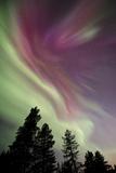 Aurora Borealis above Kiruna  Sweden