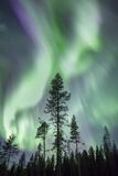 Aurora  Kiruna  Sweden  Scandinavia