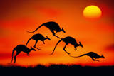 KANGAROOS IN MIDAIR AT SUNSET