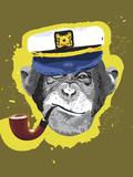 Chimpanzee Wearing Captain's Hat  Smoking Pipe