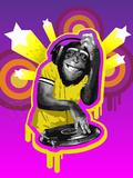 Chimpanzee DJ
