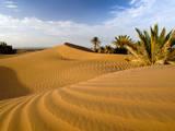 Sahara Desert at M'hamid, Morocco, Africa Papier Photo par Ben Pipe Photography