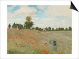 Poppy Field  Near Argenteuil  c1873