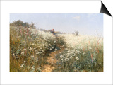 A Lady with a Parasol in a Meadow with Cow Parsley  1881