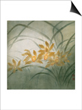 Flower Series III - Cymbidium Orchids