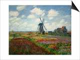 A Field of Tulips in Holland  1886