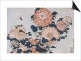 Chrysanthèmes et taon