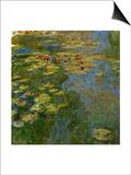Waterlilies  1917-1919