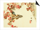 Flowers and Birds Picture Album by Bairei No10