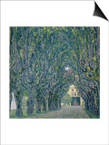 Tree-Lined Road Leading to the Manor House at Kammer  Upper Austria  1912