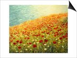 Poppies On The Seashore