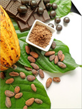 Cocoa Pod With Cocoa Beans  Powder  And Chocolates