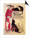 Clinique Cheron  Veterinary Medicine and Hotel