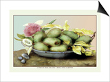Dish of Medlars  A Rose  and Almonds